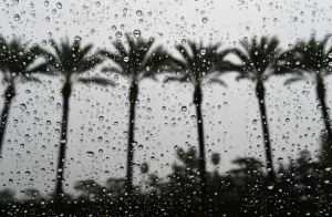 rain in souther california
